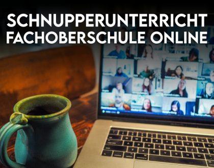 Schnupperunterricht Fachoberschule Online